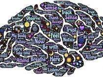 Światowy Tydzień Mózgu w POWRE